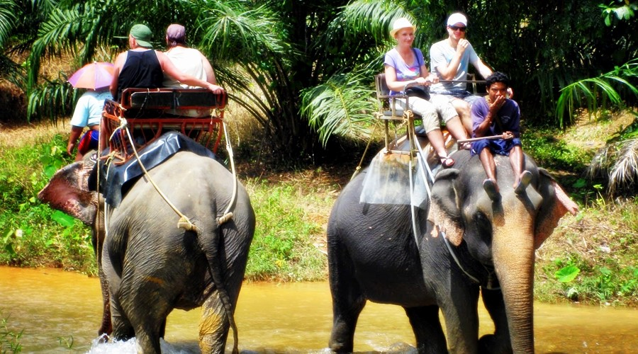 Khao-Sok-Day-Trip5phuket-tours-transfers-com