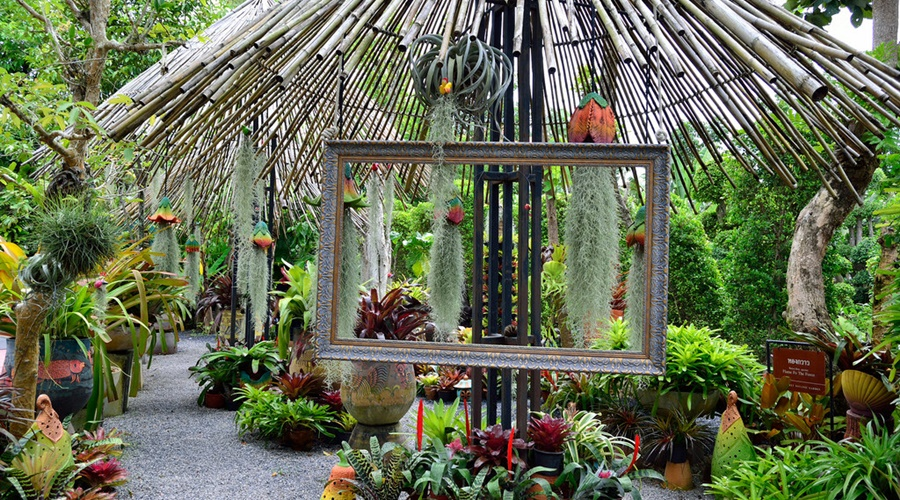 Phuket-Botanic-garden007-10750646864_7dac824fa0_b_PPKK_Tours_Service
