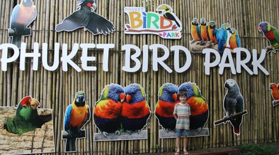 phuket_bird_park_004-phuket-bird-park_PPKK_Tours_Service