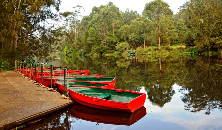 lane-cove-boats-on-river
