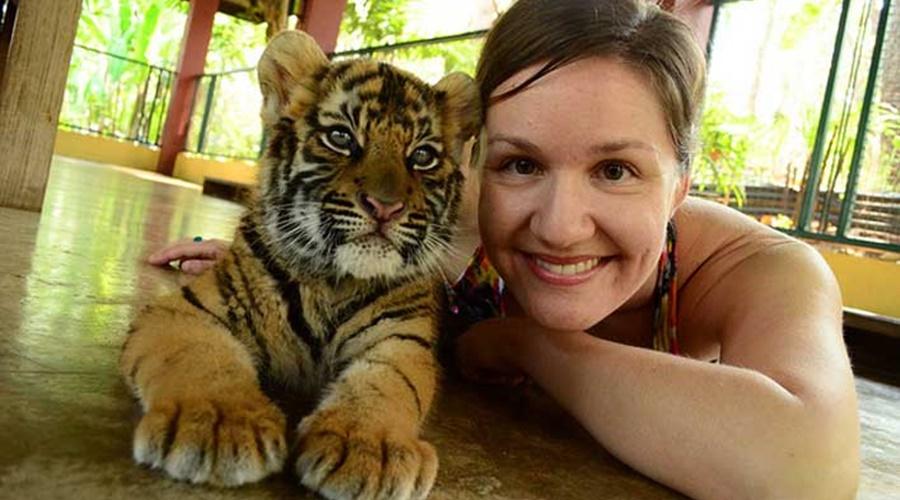 Phuket_Tiger_Kingdom_005-tiger-1_PPKK_Tours_Service